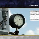 Lybelle Creations Printed Design Portfolio - Delta Seaboard Production Equipment